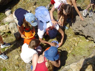 La Côte Bleue Marine Park, France - Marine life fun workshops / Ocean Great Ideas