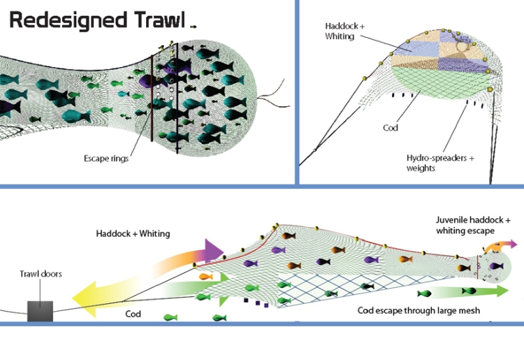 Fishing nets with LED lights and selective panels to reduce by catch / Ocean Great Ideas